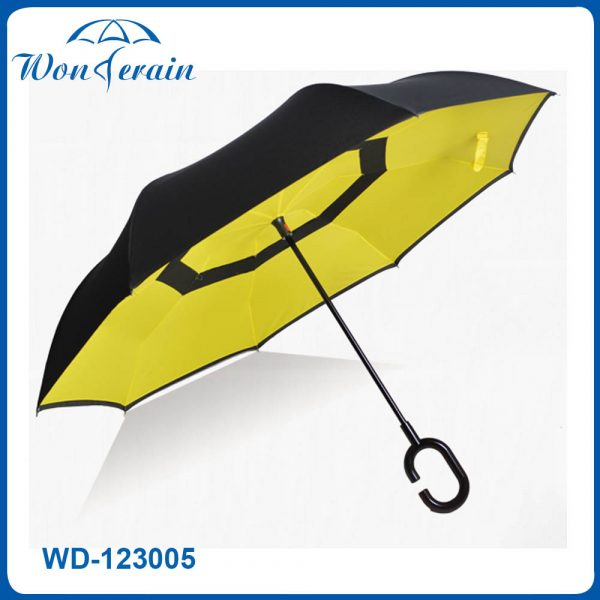 WD-123005